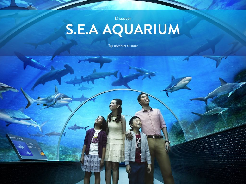 Smile Holiday With We Serve Everyone Tiket Singapore Zoo Dewasa Sea Aquarium